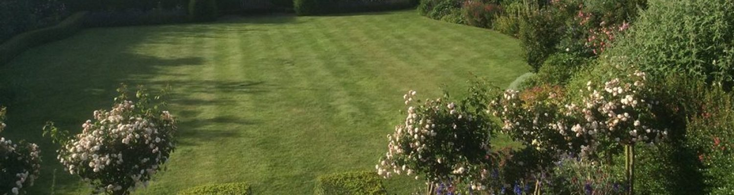 Lawn care for Suffolk & North Essex